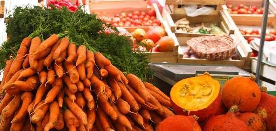 Sistema orgânico de produção de alimentos