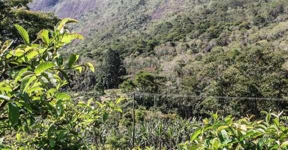Análise do solo, primeiro passo para produzir alimentos