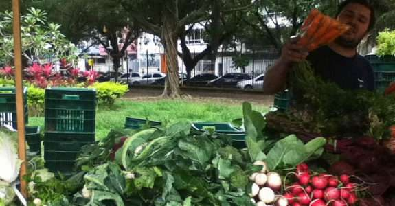 O comportamento do consumidor de orgânicos em Florianópolis