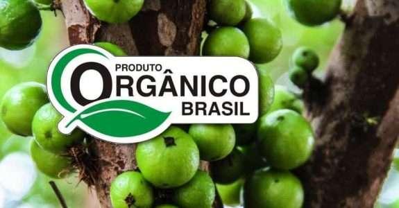 Deseja investir em orgânicos?