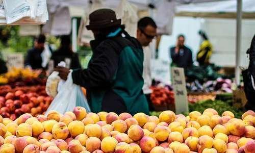 Consumidores orgânicos: discursos, práticas, responsabilidade socioambiental