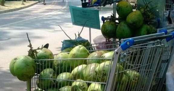 Soluções para o desperdício de alimentos