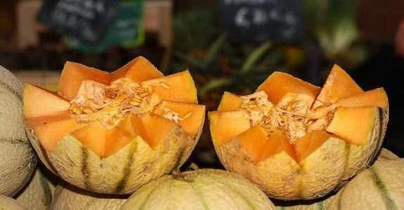 Mercado de frutas e as dificuldades da logística