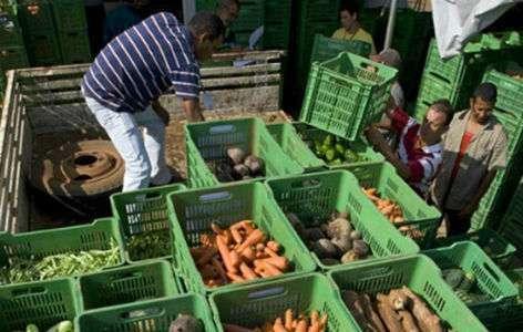 Programas ambientais ajudam a garantir produção de alimentos