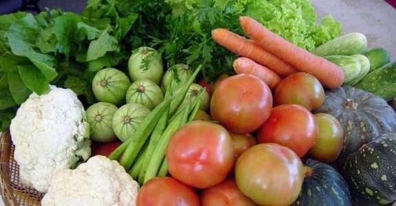 Agroecologia e o direito à alimentação