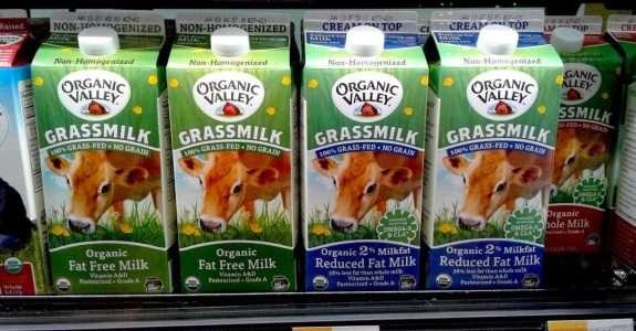 Cresce demanda por leite orgânico nos EUA