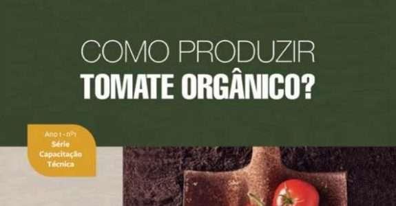 Como produzir tomate orgânico?