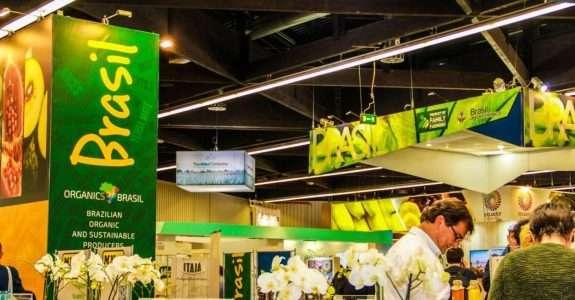 Orgânicos vão ajudar o Brasil a alcançar desenvolvimento sustentável exigido pela ONU  Publicado