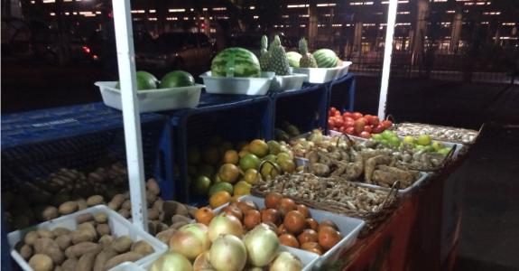 Agroecologia: Práticas, mercado e política para uma nova agricultura