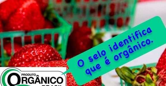Campanha pela certificação de orgânicos combate informalidade