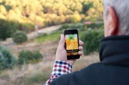 Inovação, agricultura e cadeias de valor