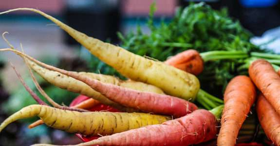 Dissimilaridade entre famílias de cenoura em dois sistemas de produção