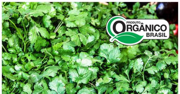 Como regularizar a produção orgânica?
