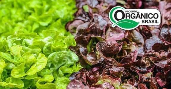 Legislação da Produção Orgânica no Brasil