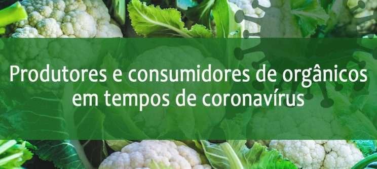 Coronavirus informações