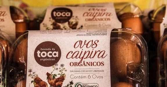 Assimetria Informacional no Mercado de Alimentos Orgânicos