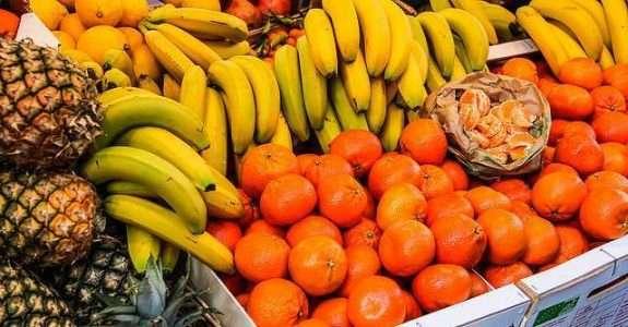 DF regulamenta política de agroecologia e produção orgânica
