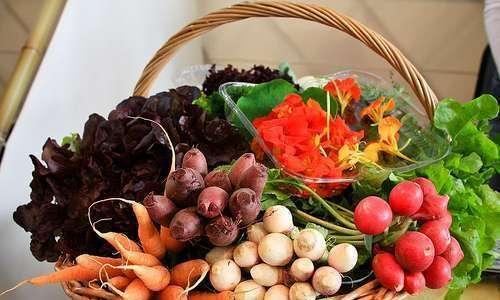 Normas para a produção e processamento de orgânicos