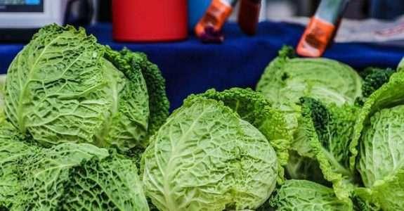A tecnologia como aliada do comércio orgânico