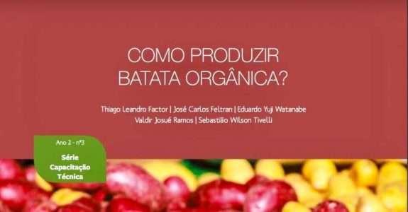Como produzir batata orgânica?