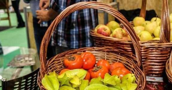 Comissão da Câmara aprova projeto que restringe venda direta de orgânicos