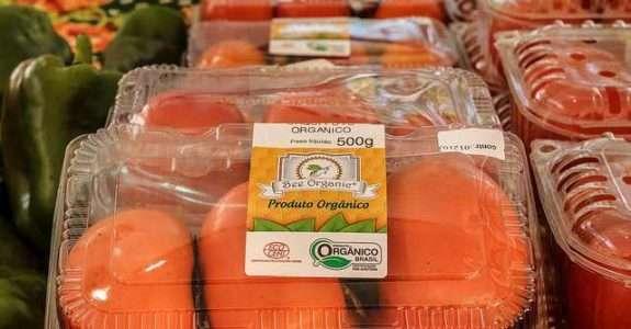 Para representante do movimento Slow Food no Brasil, a certificação atrapalha produtores de orgânicos