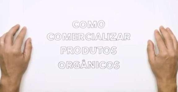 Como comercializar produtos orgânicos