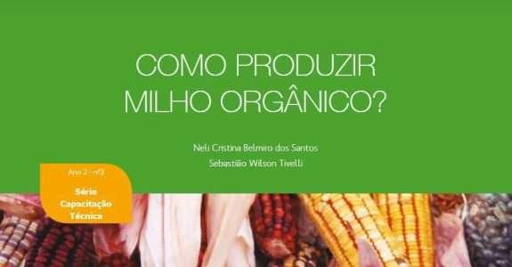 Como produzir milho orgânico?