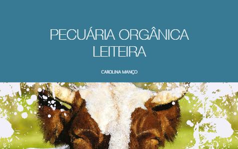 Como manter a produtividade na pecuária leiteira orgânica