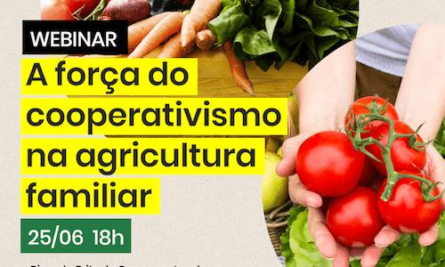 A força do cooperativismo na agricultura familiar