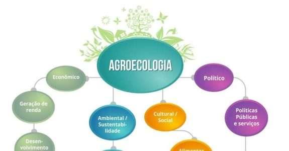 Práticas alternativas para a produção agropecuária agroecológica