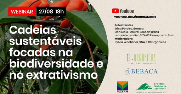 Webinar debate cadeias sustentáveis com foco na biodiversidade e no extrativismo