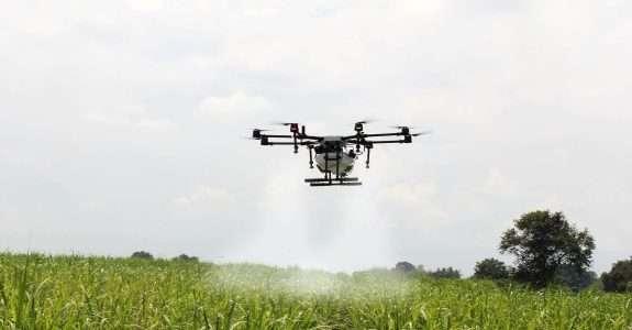 Drones impulsionam o controle biológico no Brasil