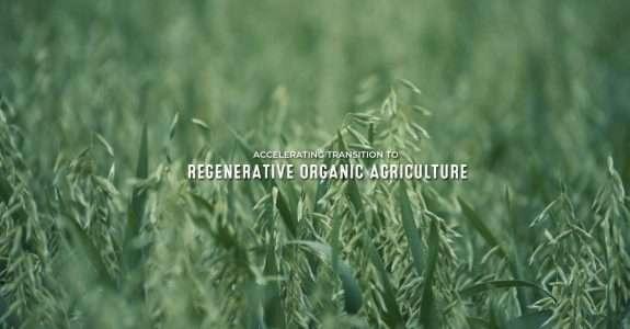 Encontro debate cadeias sustentáveis e agricultura regenerativa