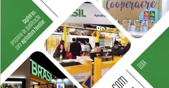 Como participar com sucesso em feiras internacionais