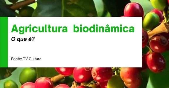 Agricultura biodinâmica, o que é?