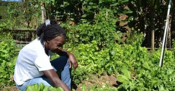 Participação feminina na agricultura familiar atinge 80% em comparação à masculina