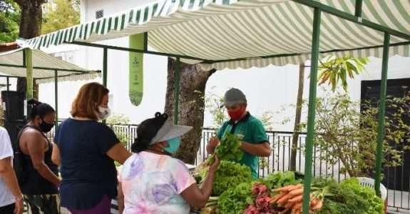 Pernambuco sanciona Política Estadual de Agroecologia