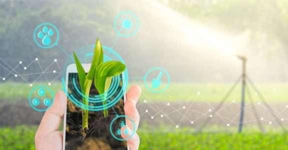 Cerca de 70% dos cinco milhões de propriedades rurais no Brasil não têm conectividade