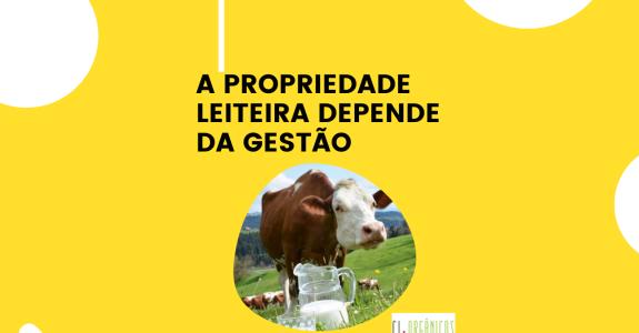 A propriedade leiteira depende da gestão