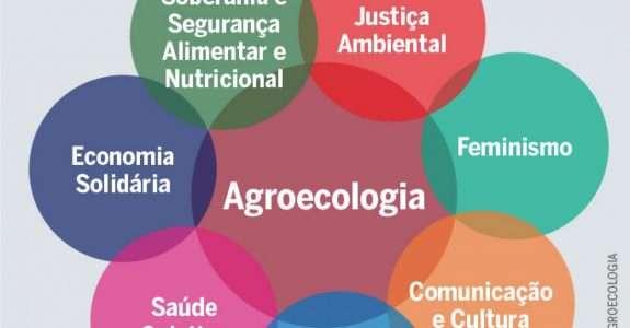 Agroecologia: alguns conceitos e princípios