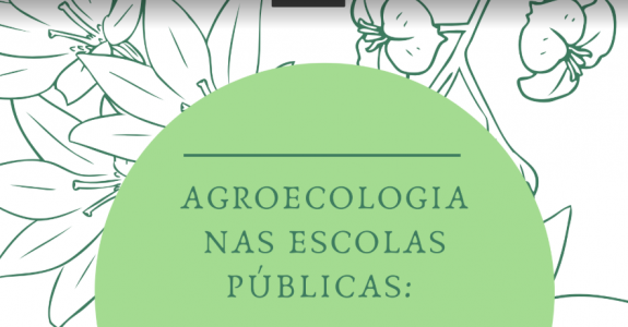 Agroecologia nas escolas públicas: educação ambiental e resgate de saberes populares