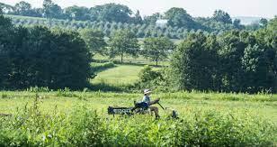 Em orgânicos, meta agora é a agricultura 'regenerativa'