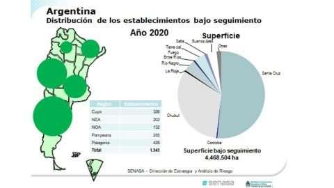 orgânicos-Argentina