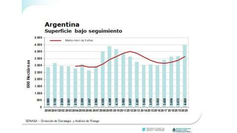 Argentina-superficie-orgânica