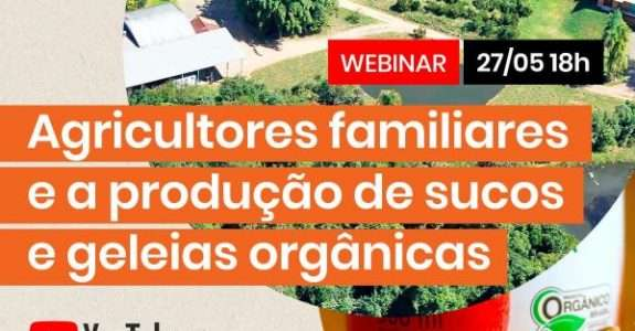 Feiras agroecológicas estimulam a troca de conhecimento e impulsionam o mercado de alimentos orgânicos