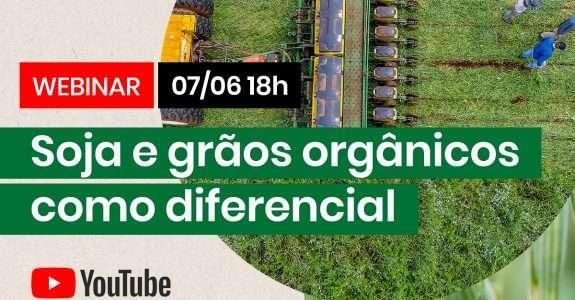Soja e grãos orgânicos como diferencial – Série Conversas CI Orgânicos / OrganicsNet