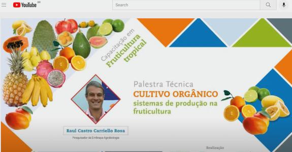 Cultivo Orgânico, sistemas de produção na fruticultura.